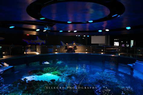wedding reception new aquarium new aquarium wedding craig michael allegro photography