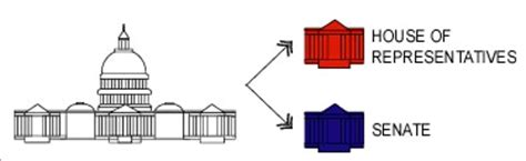 What Are The Two Houses Of The Legislative Branch by Etap The Structure Of Government