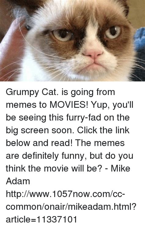 you re going grumpy history cats grumpy cat meme and memes memes of 2016 on
