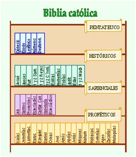 libro la biblia catlica para antiguo testamento divisi 243 n de los libros