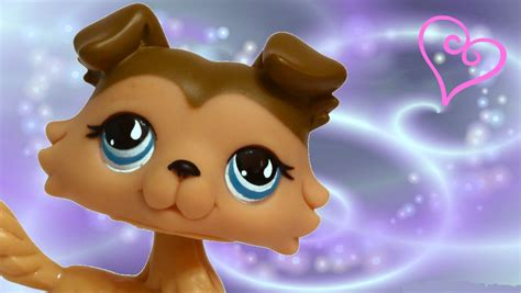 lps background littlest pet shop wallpaper desktop wallpapersafari