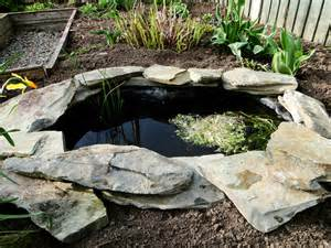 Small Backyard Fish Ponds by Garden Pond Wellywoman