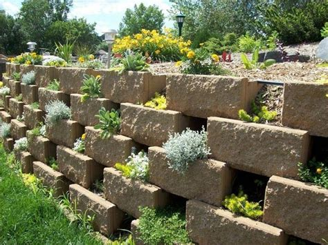 giardini verticali prezzi giardini verticali giardino fai da te