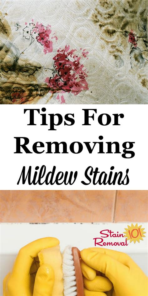 10 Best Stain Removal Tips by Stain Removal Mildew Tips For All Types Of Surfaces