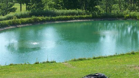 backyard bass pond ponds water gardens