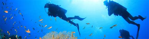 scuba dive trips our scuba diving packages and prices in el nido philippines
