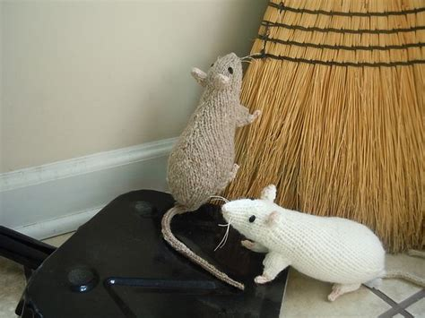 Knitting Pattern Rat | 17 best images about regratsy on pinterest lab rats