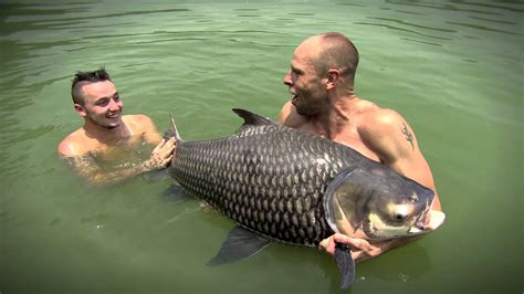 bid fish the big fish season 2 trailer