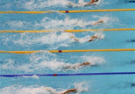 vasa trainer vasa trainer reviewed the swimmer s ultimate dryland tool