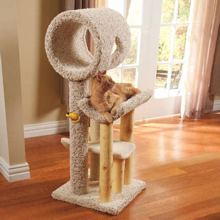 cat tree house cat trees furniture drs foster smith classi cat treehouse