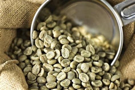Green Coffee Bean Handel wholesale green coffee beans bulk best green coffee