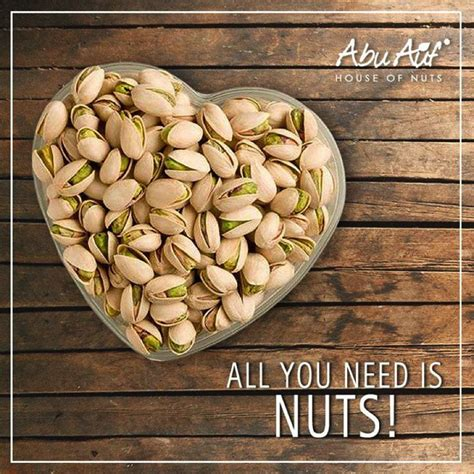 healthy fats pistachios eat nuts or go nuts health benefits of nuts