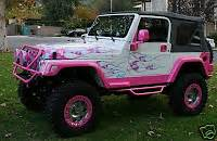 1000 images about jeeps on jeep rubicon pink