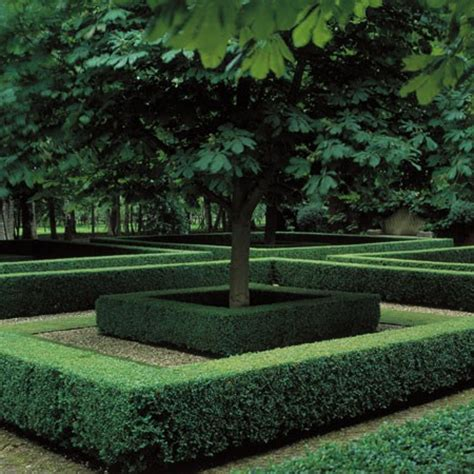 alley garden by fudge landscapes boxwoods digging in the dirt would you like a formal garden