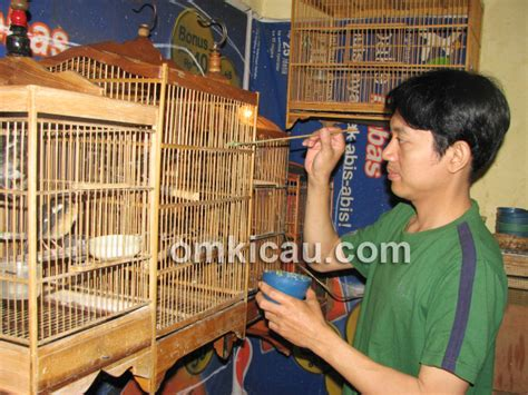 Lu Gantung tempat makan burung gantung dekoratif alumunium cor lu