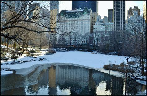 Imagenes De Nueva York Invierno   paseos de domingo por central park invierno historias