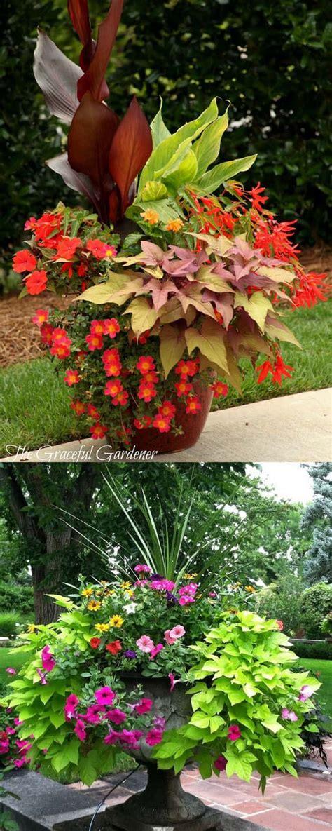 Container Flower Gardening Ideas 24 Stunning Container Garden Planting Designs Planting Gardens And Plants