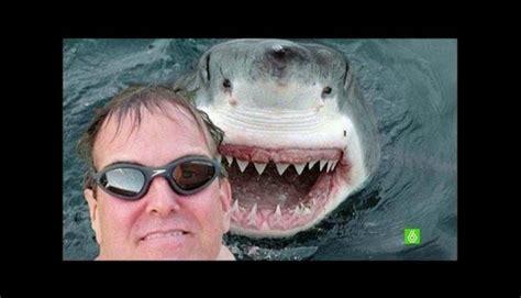 imagenes tontos y mas tontos selfies con animales m 225 s extremos y tontos que circulan en
