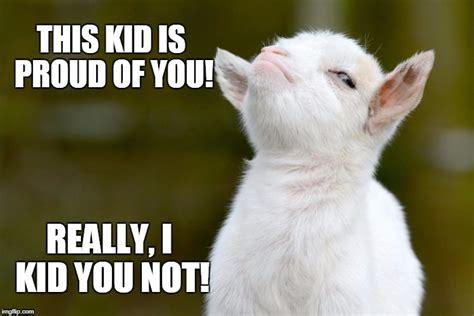 Proud Meme - proud baby goat imgflip