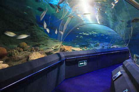 Tiket Underwater World Pattaya Thailand Dewasa underwater world pattaya wisata thailand