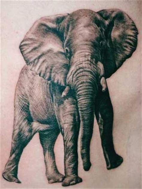 asian elephant tattoo designs disasters elephant tattoos