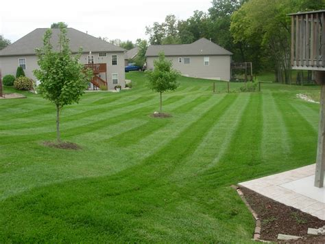 landscaping lawn care pictures lawnsitecom lawn care landscaping invitations ideas