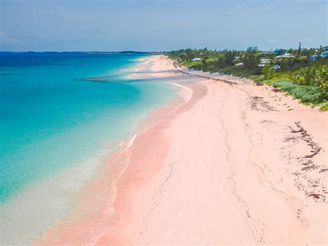 8 Beaches You To Visit by 8 Travel Tips You Need To Before Visiting Bermuda