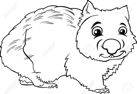 Wombat Clipart 16 129 Wombat Clipart Clipart Fans Wombat Coloring Page