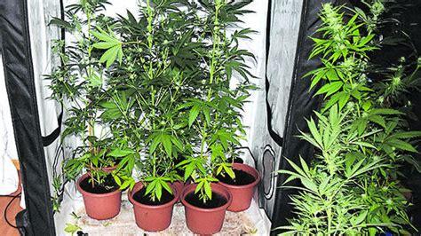 wohnungen in jever ermittlungen in jever polizei beschlagnahmt gro 223 en drogenfund