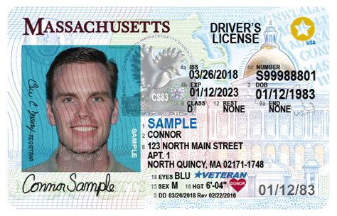 us green card photo template getting or renewing a driver s license id card or learner