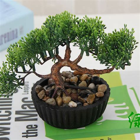 plant for home decoration indoor plant decor promotion shop for promotional indoor