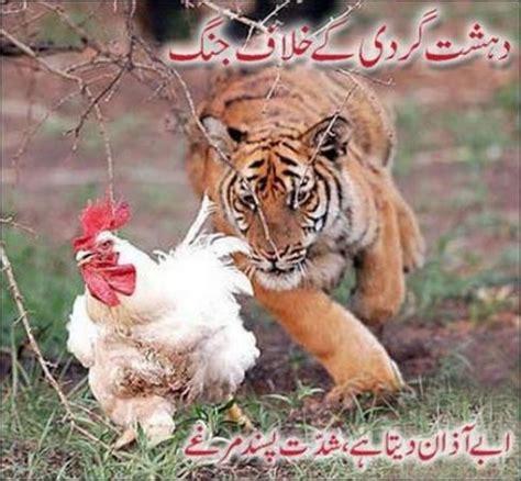 dahshat gardi k khilaf jang. funny images & photos