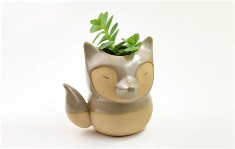 Animal themed ceramic pots will add beauty and cuteness in your house