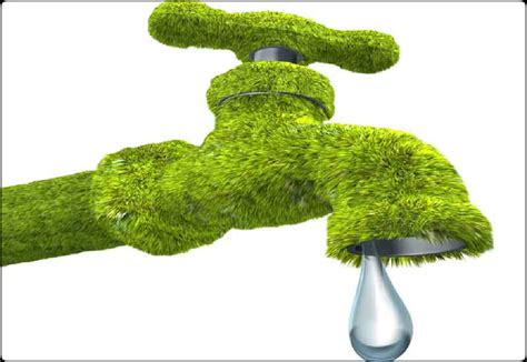 Kitchen Faucet Plumbing Reduce Water Usage With Green Plumbing Ways2gogreen Blog