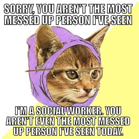 Social Work Meme - cool cat social worker can t be phased social work
