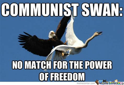 Freedom Meme - murica freedom meme www pixshark com images galleries