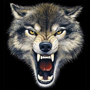 snarling wolf tattoo gallery for gt wolf snarling tattoos