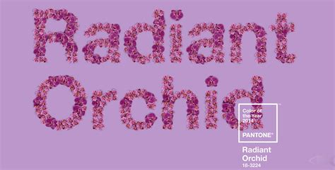 radiant orchid color the marmite effect pantone s radiant orchid agentofstyle