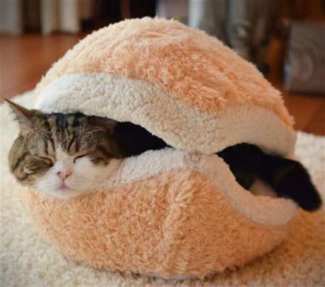 cheeseburger bed cat cheeseburger bed