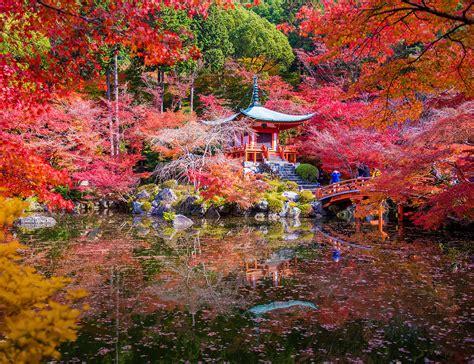 imagenes impresionantes de japon los 12 lugares m 225 s fascinantes del mundo