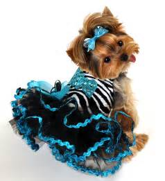 Custom made dog clothing tinkerbell s closet dog couture boutique