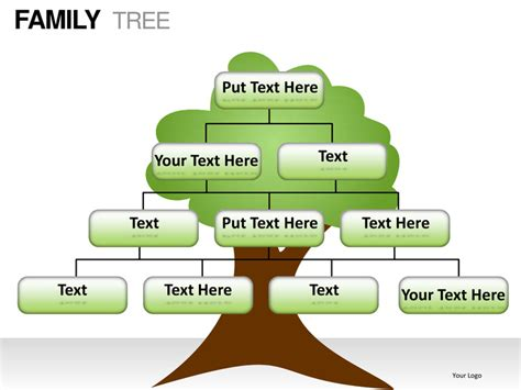 Family Tree Powerpoint Presentation Templates Powerpoint Genealogy Template