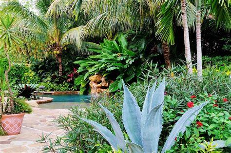 piante da giardino ricanti piante esotiche da giardino progettare un giardino tante