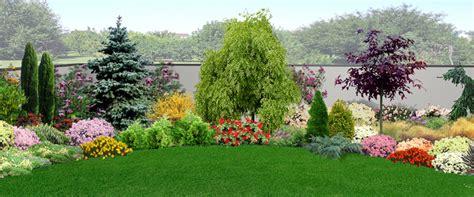 piante da giardino fiorite piante da giardino sempreverdi e fiorite quali scegliere