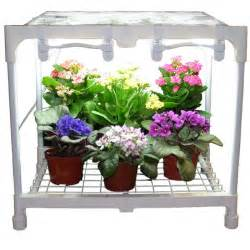 grow lights for indoor plants to create beauty for living