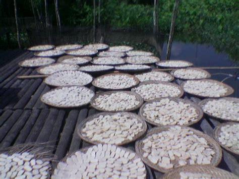 Kerupuk Bumbu Ikan Gabus kemplang kerupuk dan pempek palembang rizky enak gurih