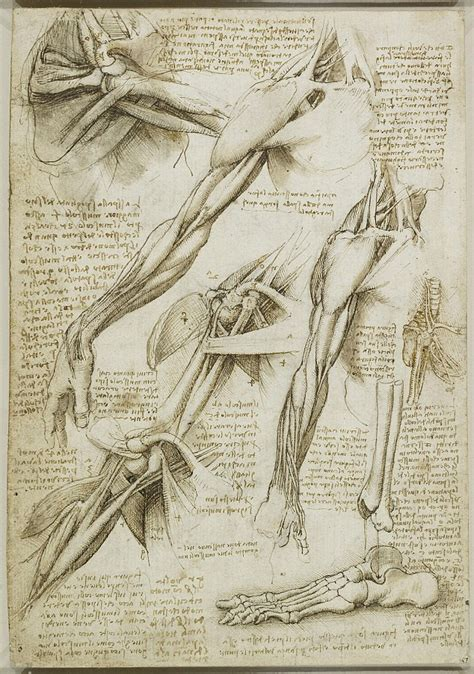 the practice and science of drawing books leonardo da vinci s to do list offers an insight