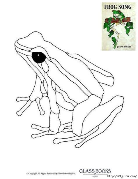 glass frog coloring page 86 best images about printable turtles frogs on