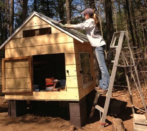 heathers chicken coop   recycled wood pallets