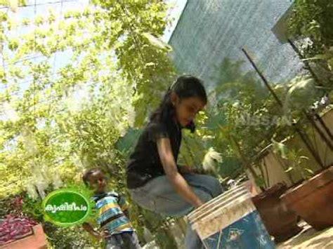 documentary   terrace vegetable garden youtube